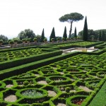 The Vatican Gardens, a view